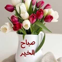 صباح الورد متحركه , اجمل صور صباح الورد والياسمين متحركه
