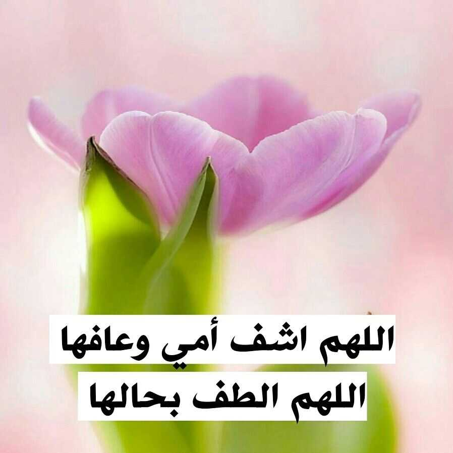 اللهم اشفي امي , اجمل صور وخلفيات دعاء يارب اشفي امي