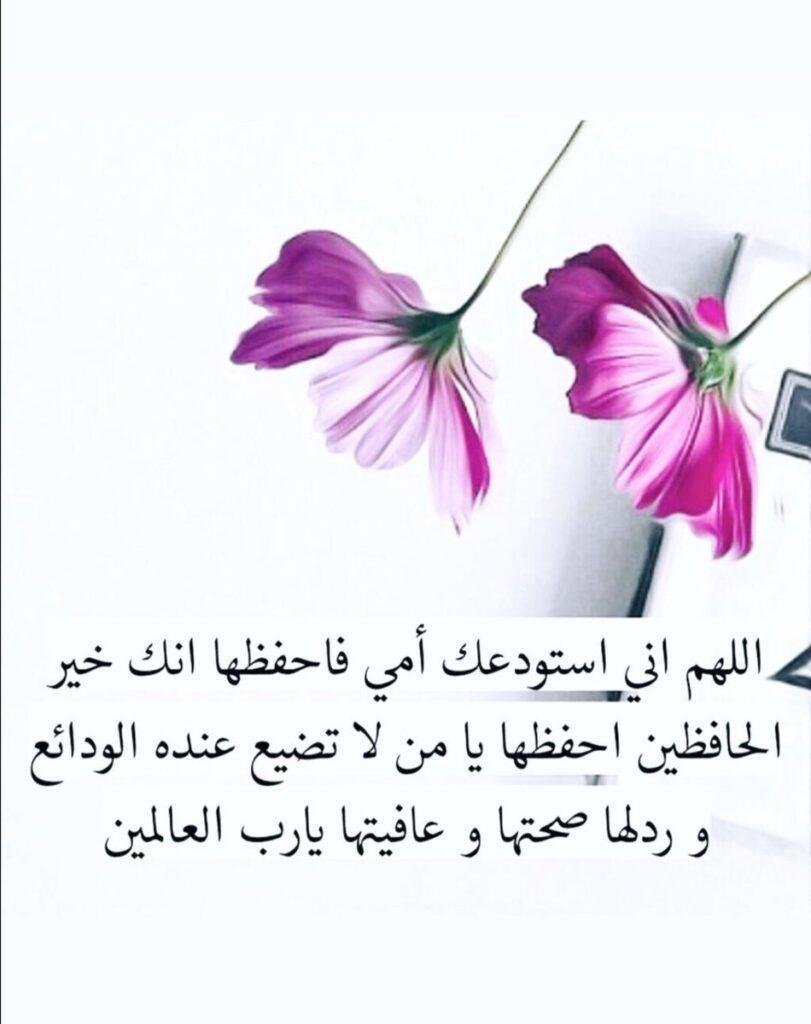 اللهم اشفي امي وعافها وجميع امهات المسلمين