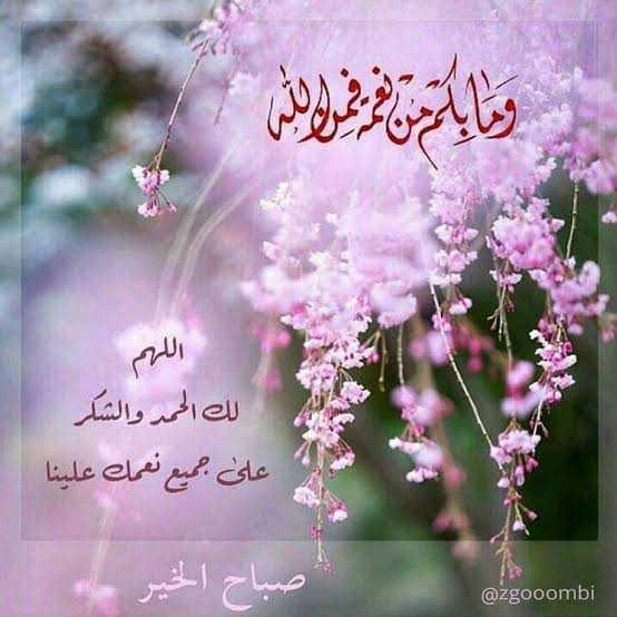 دعاء اللهم لك الحمد حمد الشاكرين