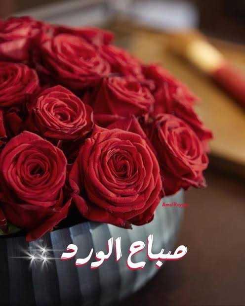 صور عن صباح الورود (1)