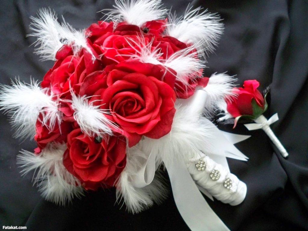 اجمل صور ورد ـ اجمل صور الورود في غاية الروعه